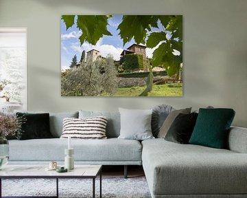 Toscaans Dorp Door Het Druivenblad