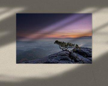 verweerd den van Tilo Grellmann | Photography