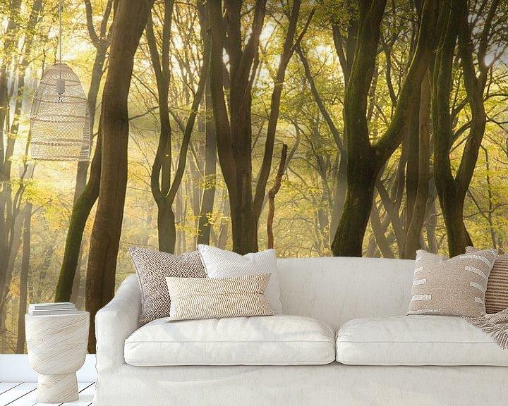 Sfeerimpressie behang: Kronkels in het bos van Albert Lamme