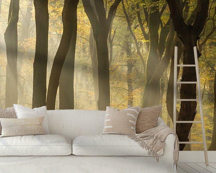 Sfeerimpressie behang: The leaning tree van Albert Lamme
