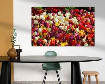 Tulpen uit de Hoofdstad von Wim Popken