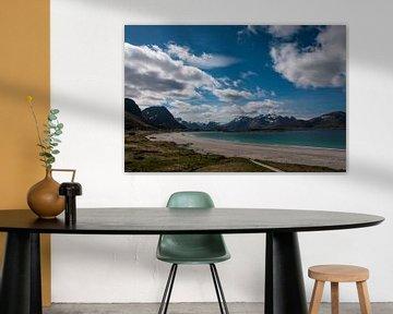 Landschaft Norwegen von Niek Belder