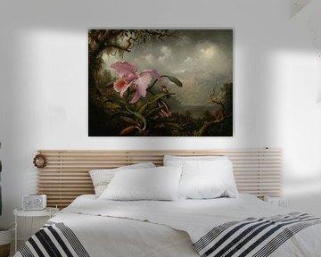 Orchidee und Kolibri, Martin Johnson Heade
