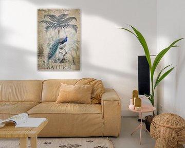 Pauw in het tropische paradijs van Andrea Haase