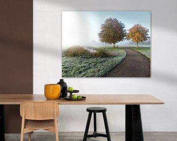 Reeuwijk Holz von Dennis de Wit