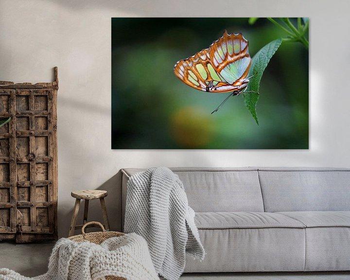 Sfeerimpressie: Malachietvlinder van Ineke Klaassen