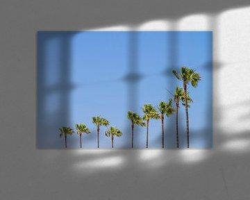 California Vibes van Melanie Viola