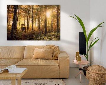 Jäger Stuhl im Herbstwald