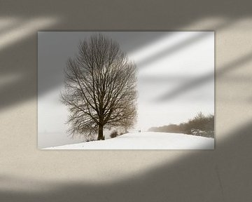Winterwandeling langs de Maas van R. Maas