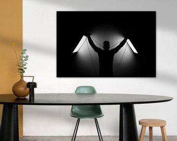 """Into the spotlight - """"Het silhouet """" part 2 van iulian Nastase"""