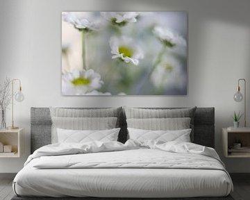 kleine Blume von Drie Bloemen Gallery