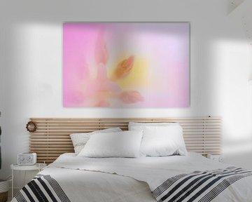 hellrosa Tulpe von Drie Bloemen Gallery