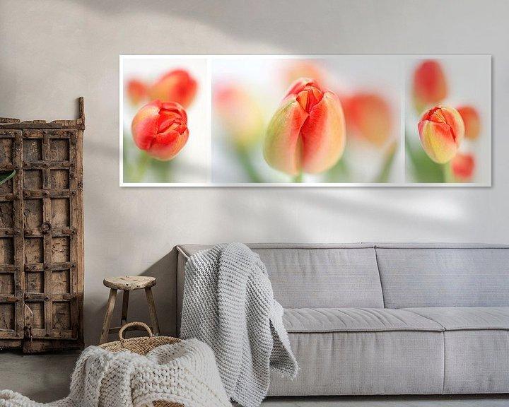 Sfeerimpressie: Fresh Tulips (Drieluik....) (bloem, tulp, lente, oranje) van Bob Daalder