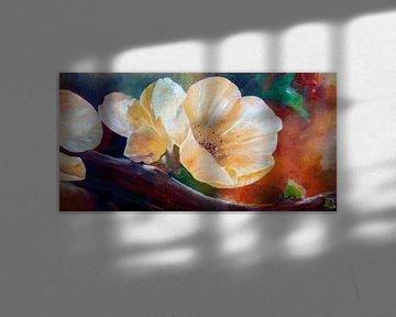 Blossom von Andreas Wemmje