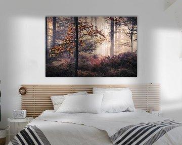 Herfstblaadjes in mistig bos van Rob Visser