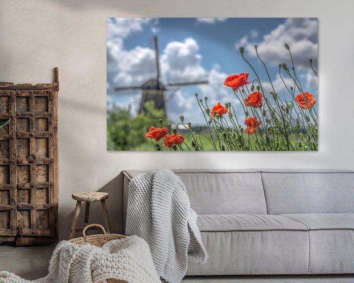 Beispiel: Mohnblumen bei Kinderdijk von René van Leeuwen