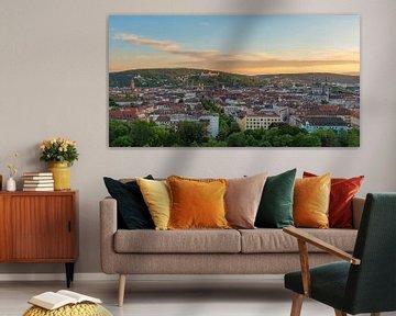 Blick über Würzburg von Robin Oelschlegel