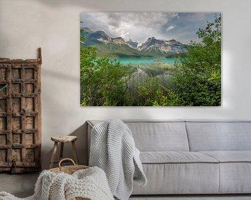 Emerald lake van Eelke Brandsma