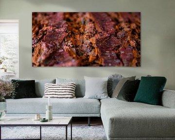 Warme kleuren van de natuur van Judith Spanbroek-van den Broek