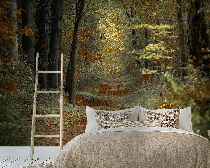 Sfeerimpressie behang: Wandeling in het herfstbos van Erna Böhre