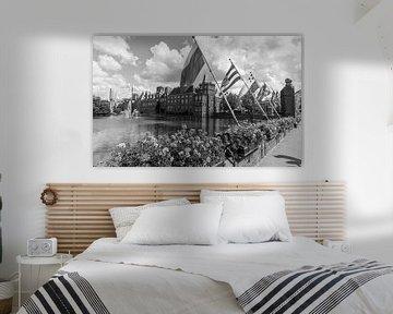 Provincievlaggen Binnenhof Den Haag Hofvijver van Arthur Scheltes