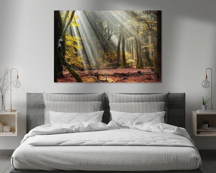 Sfeerimpressie: Forest Rise van Lars van de Goor
