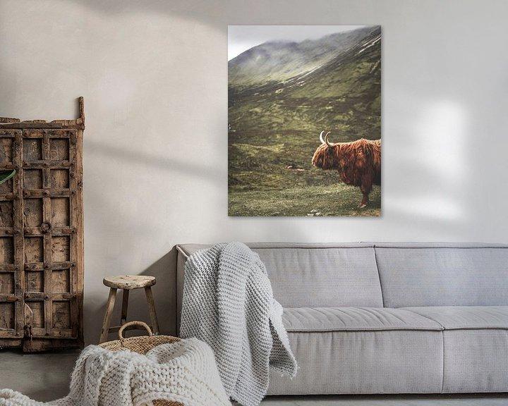 Sfeerimpressie: Schotse Hooglander in de Schotse Hooglanden van Arun Shanmugampillai