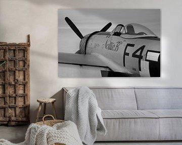 Republic P-47D Thunderbolt warbird van Arjan Dijksterhuis