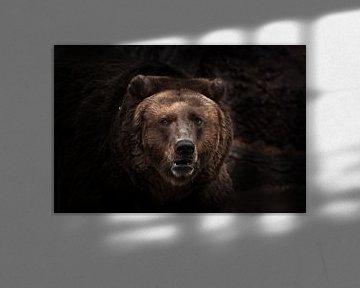 een donkerder beeld, een sterbruin licht verbijsterend beest kijkt met kleine ogen uit de duisternis van Michael Semenov
