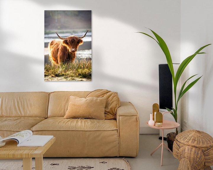 Sfeerimpressie: Portret van een Schotse hooglander #2 van Evelien Oerlemans