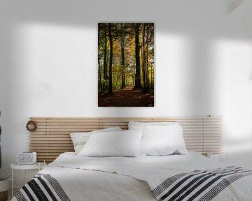 Herfst'licht' van Els Hattink