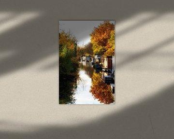 De Leidse Rijn in Utrecht in de herfst van De Utrechtse Grachten