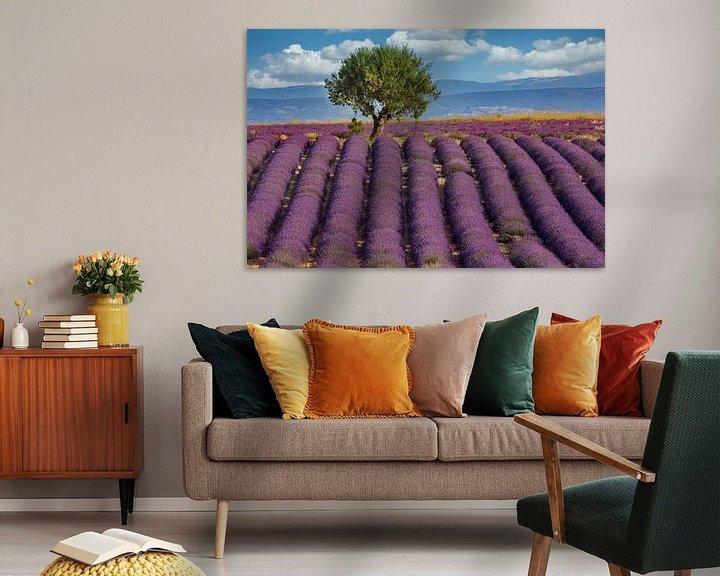 Sfeerimpressie: Lavendelveld in de Provence van Uwe Merkel