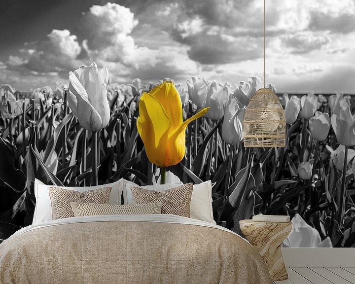Sfeerimpressie behang: De alleenstaande Tulp van Brian Morgan