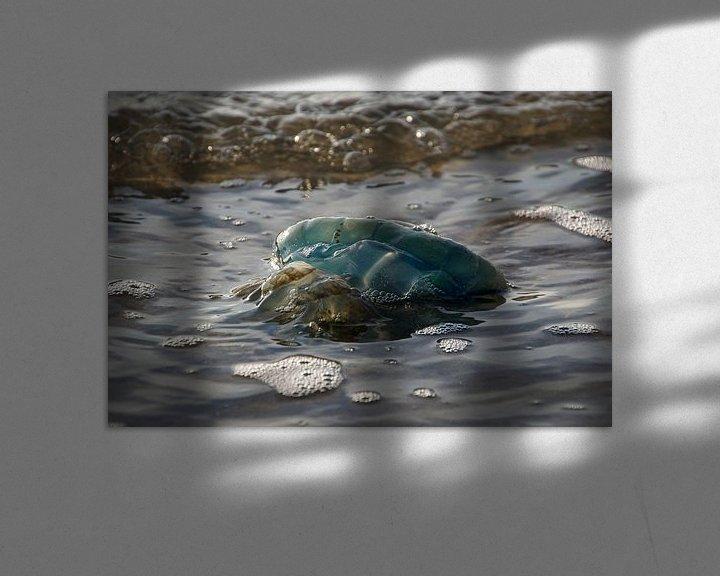 """Beispiel: """"Blaue Qualle von Tanja Otten Fotografie"""