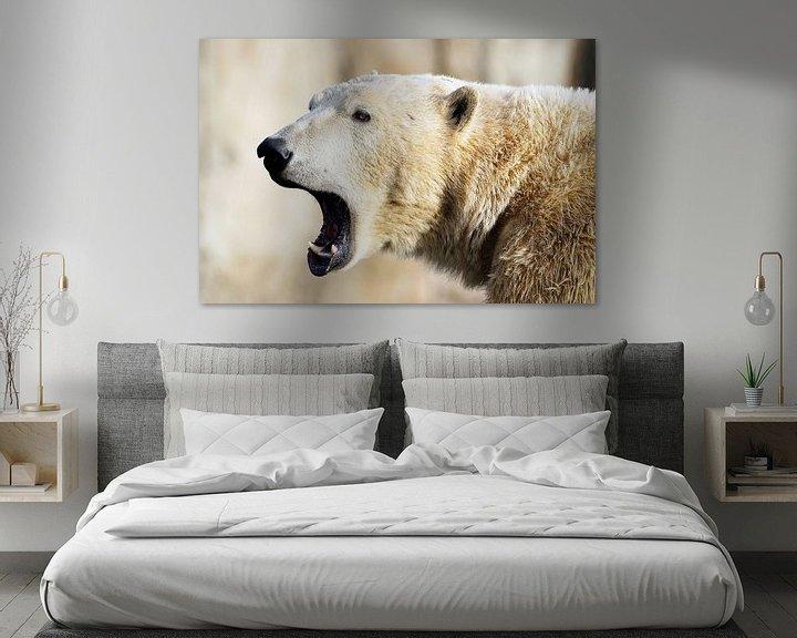 Beispiel: Eisbär'. von Tanja Otten Fotografie
