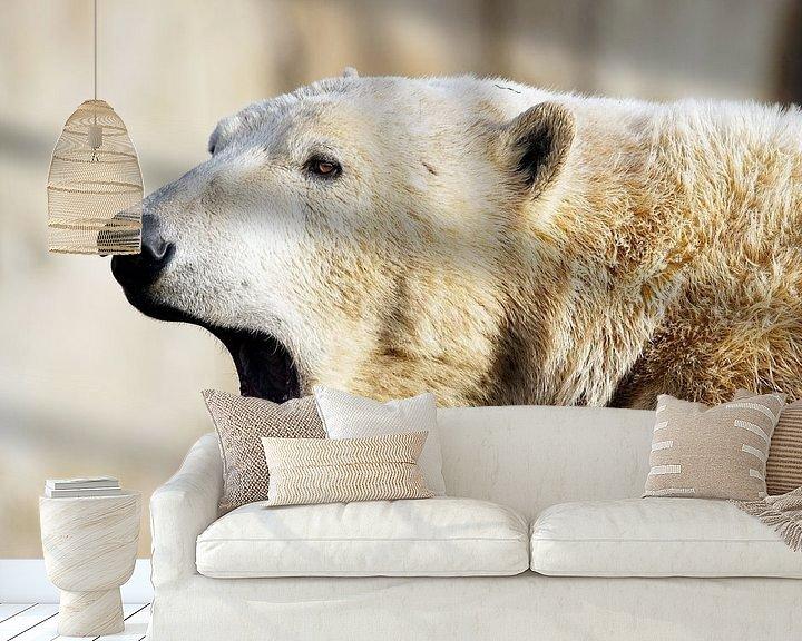 Beispiel fototapete: Eisbär'. von Tanja Otten Fotografie