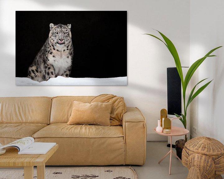 Beispiel: geleckt. Der Schneeleopard ist ein mächtiges und schönes Raubtier im Schnee vor einer dunklen Felshö von Michael Semenov