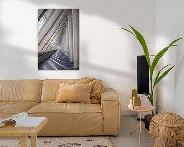 Galerie von Wanda Michielsen