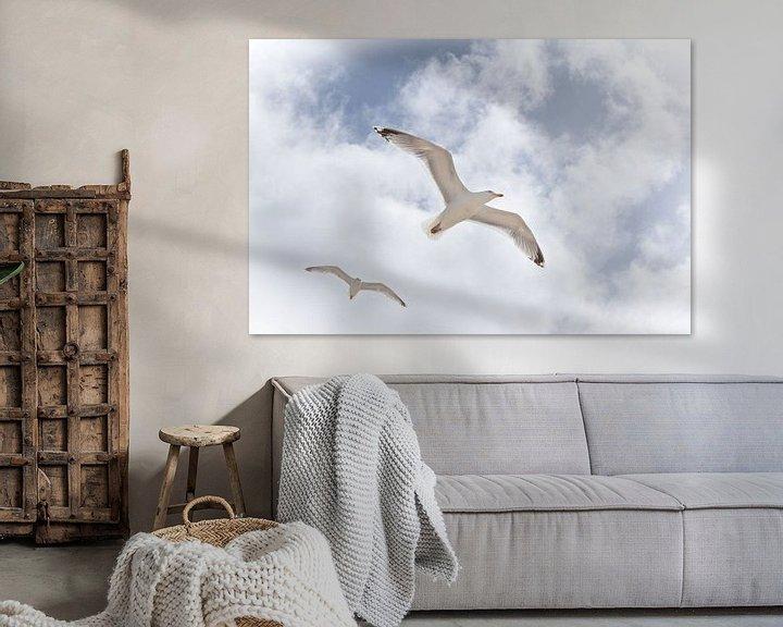 Beispiel: Freiheit'. von Tanja Otten Fotografie