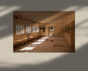 Fenster von Lynn Finch