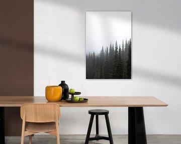Bos in de mist van Rauwworks