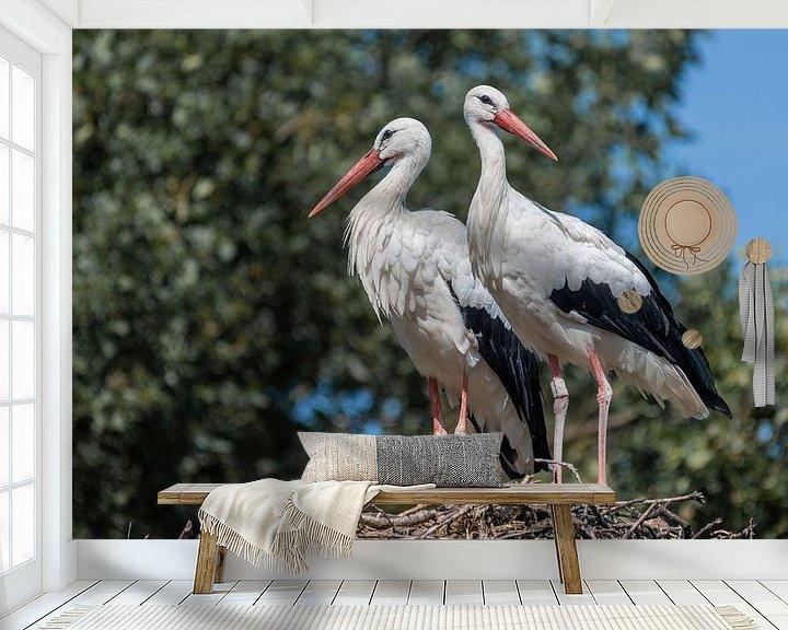 Beispiel fototapete: Zwei erwachsene Störche Ciconiidae stehen auf einem großen Nest. von Tonko Oosterink