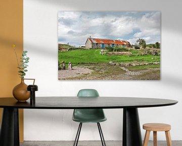 Typisch Schotse cottage van Hans Kwaspen