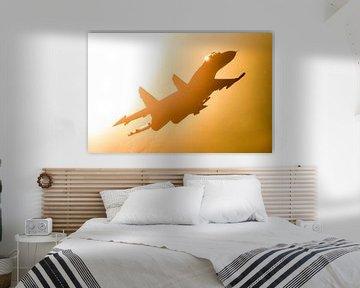 Su-27 vliegt recht langs de zon van Stefano Scoop