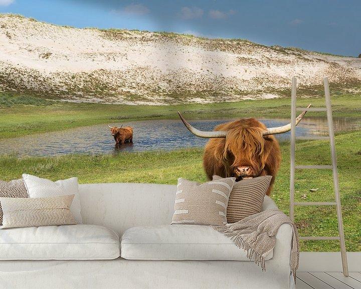 Sfeerimpressie behang: Twee blonde Schotse Hooglanders in de duinen van Peter Leenen