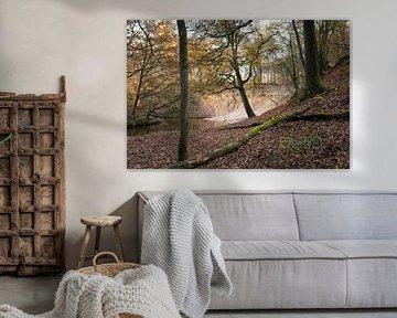 Herfst landschap met beek in bos, Noord-Limburg van Ger Beekes