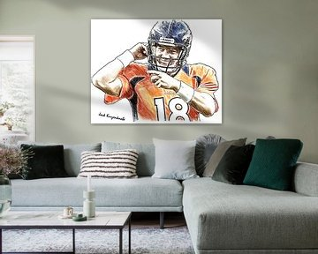 American Football, Denver Broncos