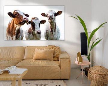 drie koeien van Bianca ter Riet