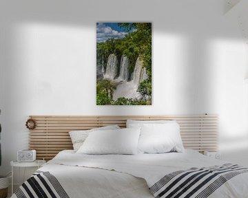 Adam en Eva watervallen in Iguazu, Argentinië van Peter Leenen
